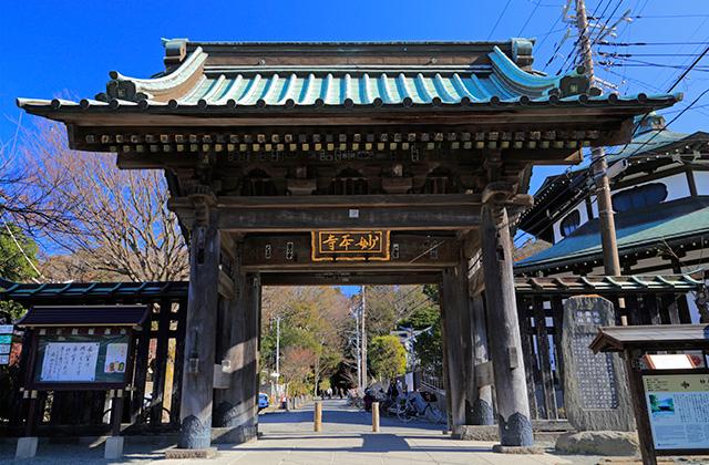 長興山 妙本寺