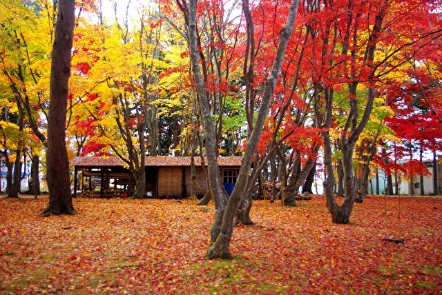 函館香雪園