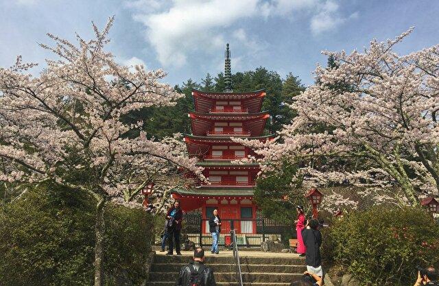 新倉山 浅間公園 忠霊塔