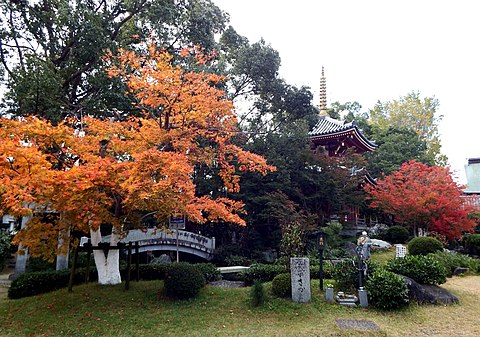 四国霊場第6番札所 安楽寺