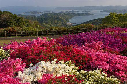 西海国立 長串山公園