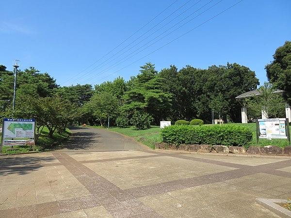 埼玉県営 和光樹林公園