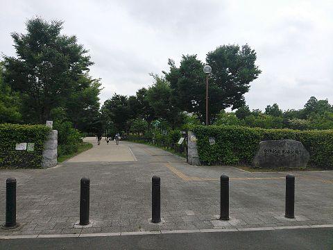 合併記念見沼公園