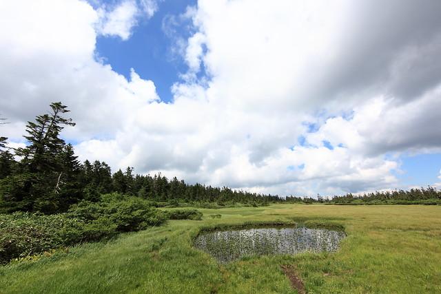 黒谷地湿原(展望台)