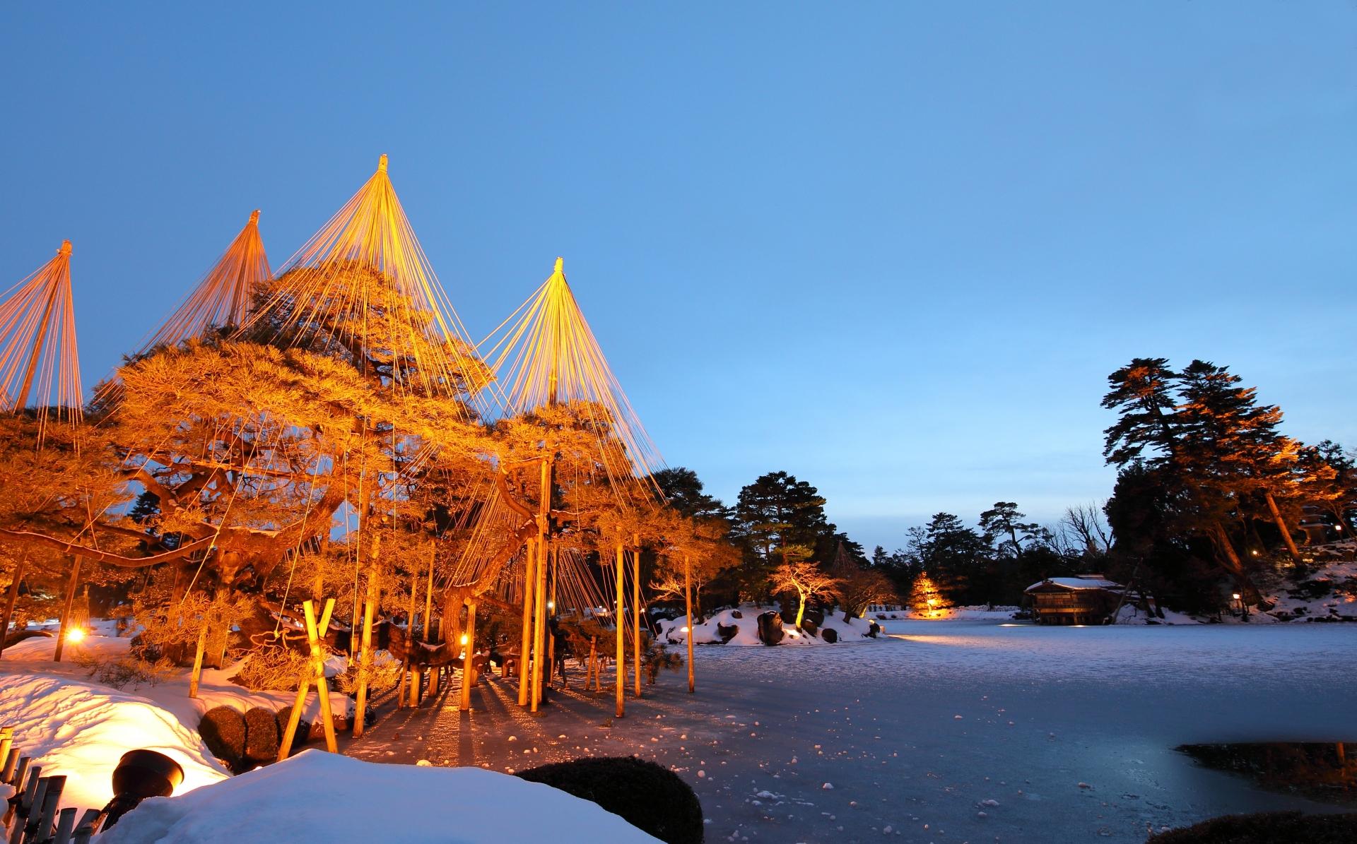 金沢兼六園の雪つり