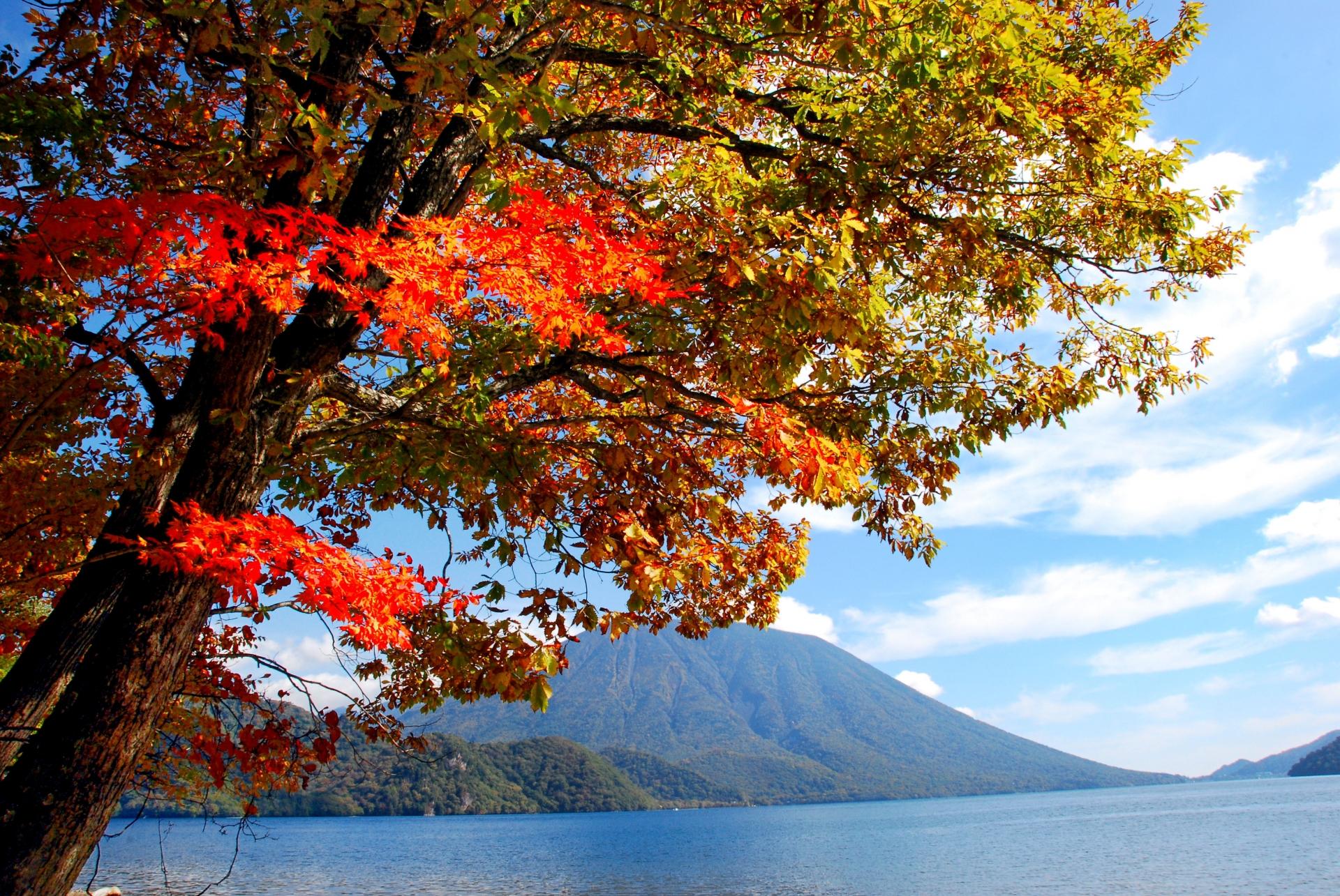 栃木中禅寺湖